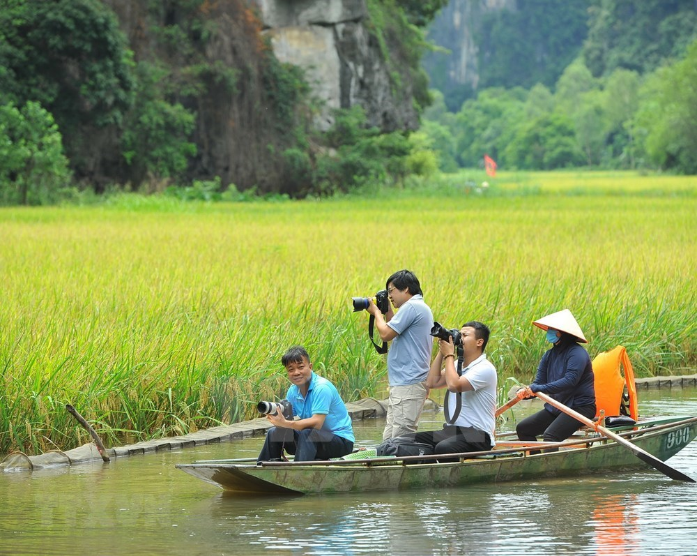 Tam Coc – Bich Dong blanketed with ripen paddy fields hinh anh 2