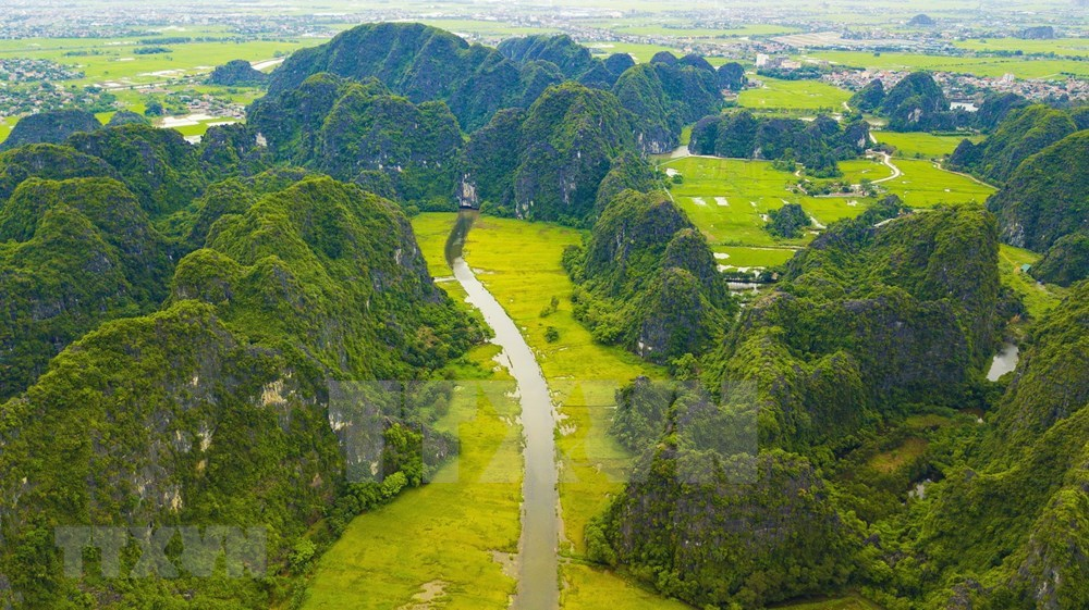 Tam Coc – Bich Dong blanketed with ripen paddy fields hinh anh 4