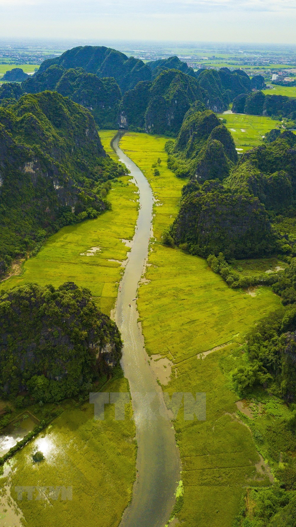 Tam Coc – Bich Dong blanketed with ripen paddy fields hinh anh 8