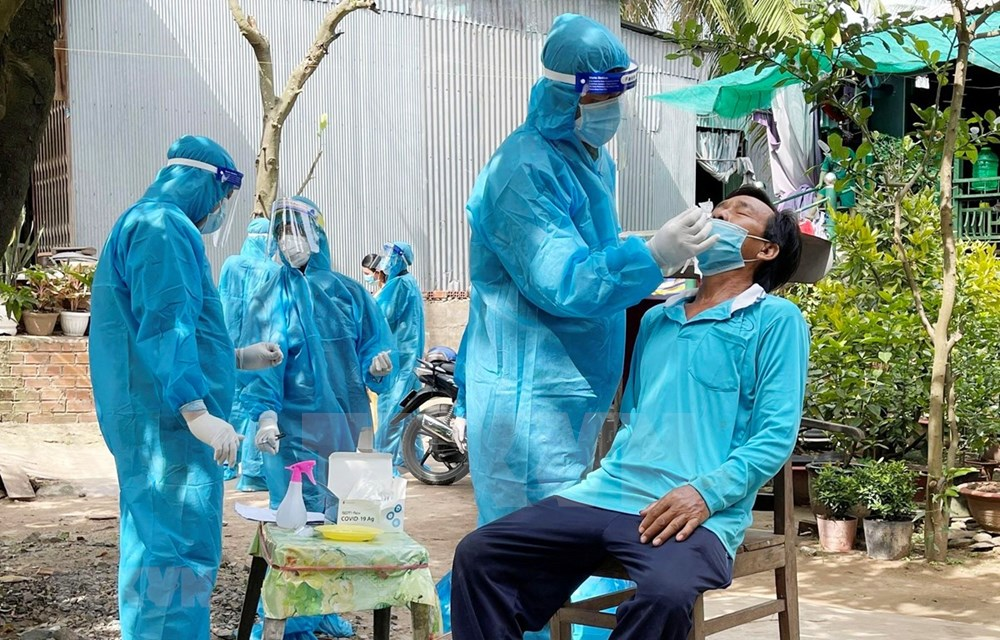 Vietnamese businesses in UK support pandemic fight in home country hinh anh 1