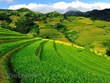 Mu Cang Chai - stunning beauty in northwestern region
