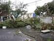 Storm Molave wrecks havoc in central provinces