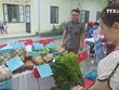 More efforts needed to develop agriculture in Bac Kan