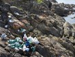 Youngsters join hand to collect trash in Da Den beach