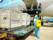 First batch of COVID-19 vaccines arrives in Vietnam