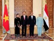 President's visits to Ethiopia, Egypt create momentum for ties