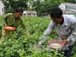 Tra Vinh province enhances poverty reduction work