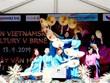 Vietnamese culture day held in Czech Republic