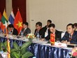 Cities in Mekong lower reaches boost tourism cooperation