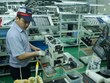 Vietnam's November PMI up from last month