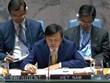 Vietnam presides over UNSC session on Yemen