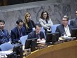 Vietnam calls for secure, unobstructed humanitarin access for Syria