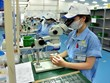 Bac Ninh industrial parks draw in foreign capital despite COVID-19