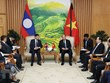Vietnam, Laos determined to foster comprehensive cooperation