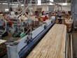 Binh Duong tops wood export nationwide