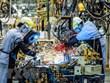 German firms optimistic about Vietnam's economy