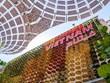 Vietnam Pavilion impresses international visitors at Expo 2020 Dubai