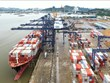 Vietnamese ports among top 50 effective container seaports