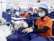 Vietnam on track to achieve 600 billion USD in foreign trade: MoIT