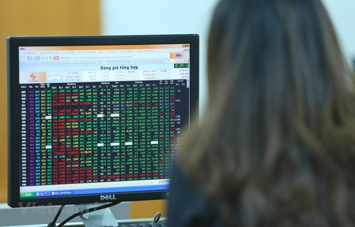 Development of the stock market (Photo: VietnamPlus)