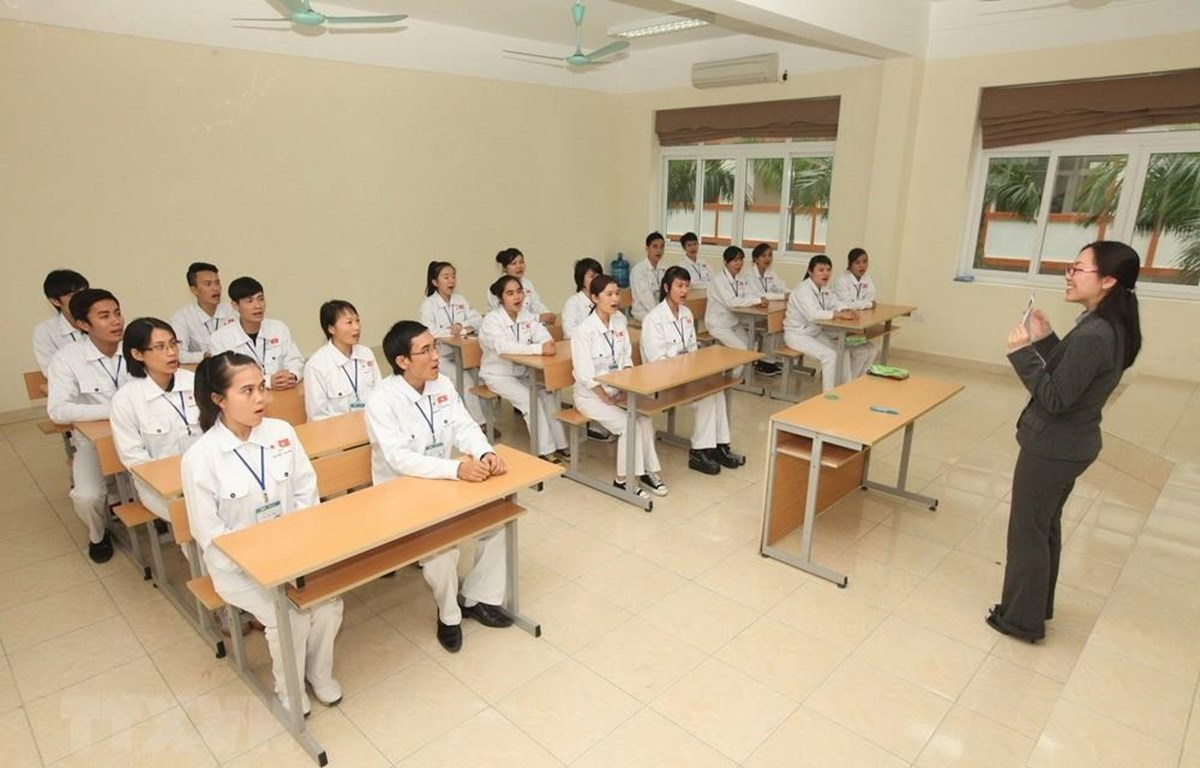 Vietnamese nurse and caregiver candidates study Japanese before arriving in Japan for working (Photo: VietnamPlus)