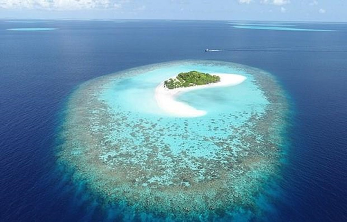 Coral Island in the Maldives (Source: dailymail.co.uk)