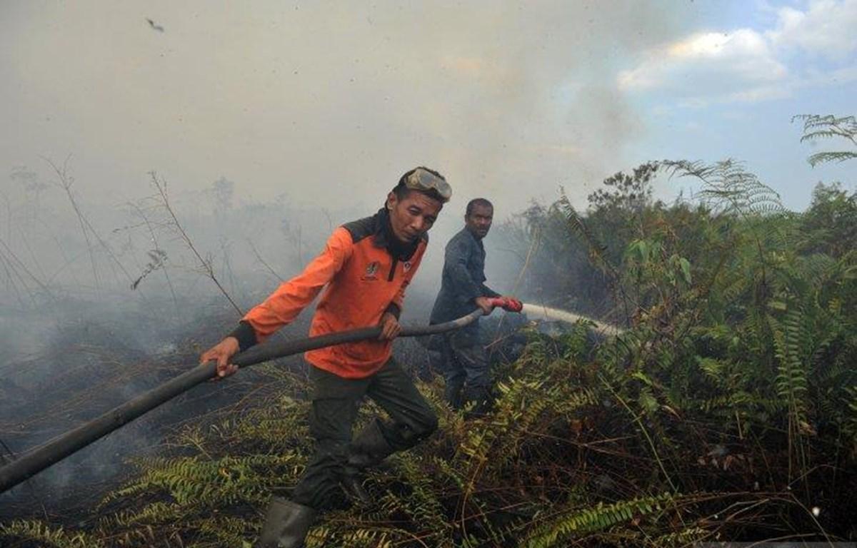 Nearly 19,000 fire hotspots identified in SEA, Papua New Guinea