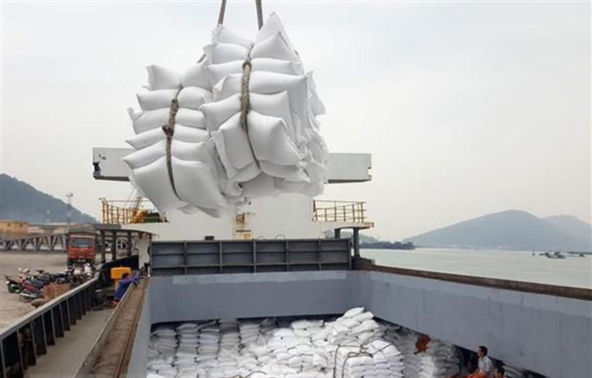 Over 40 businessmen licenced to export rice following new decree
