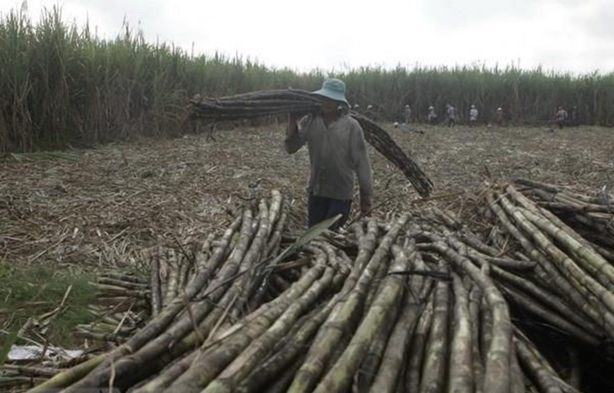 Rising treat for sugar producers after ATIGA