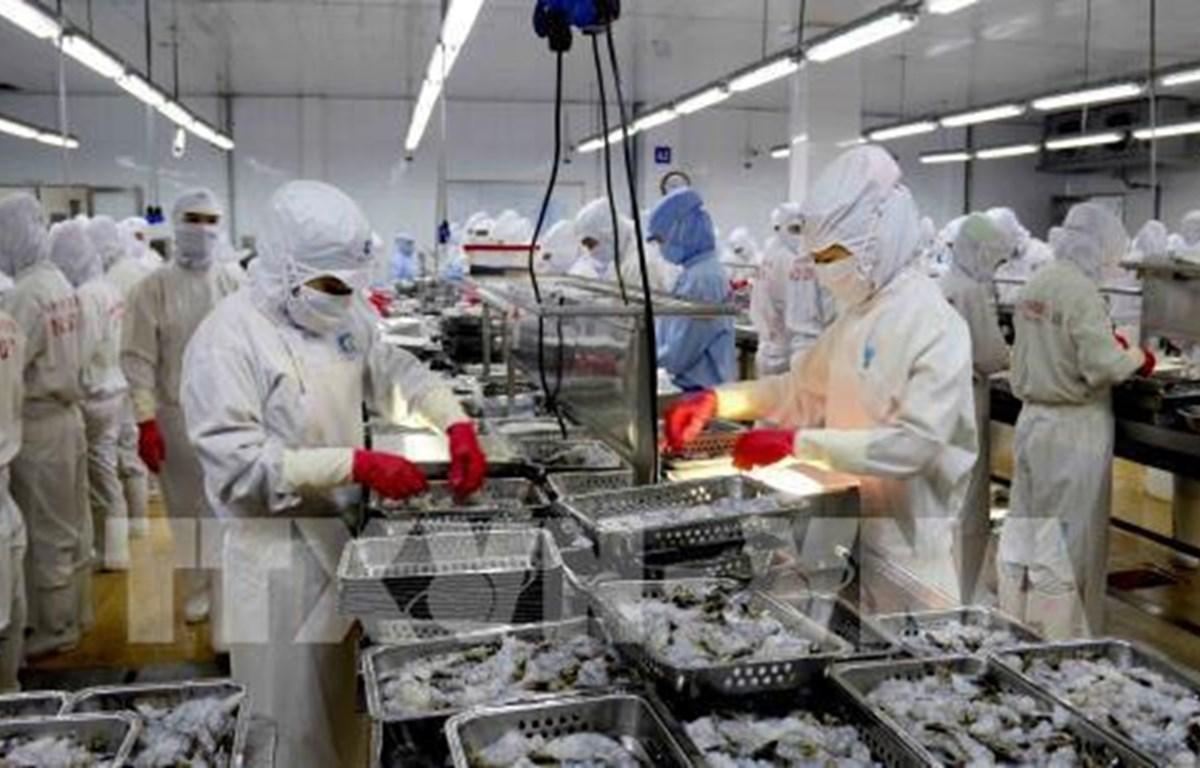 Shares of shrimp exporters surge after US cuts anti-dumping tariffs