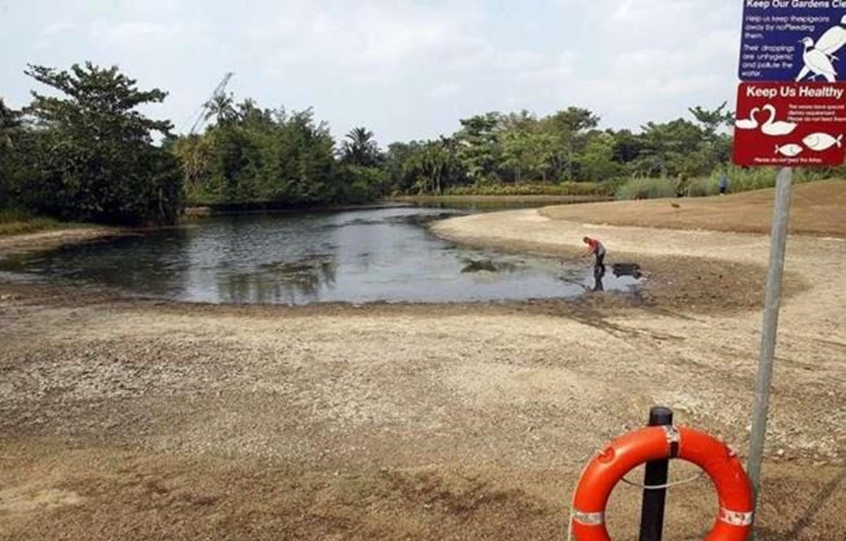 Singapore's dry spell likely caused by Indian Ocean Dipole