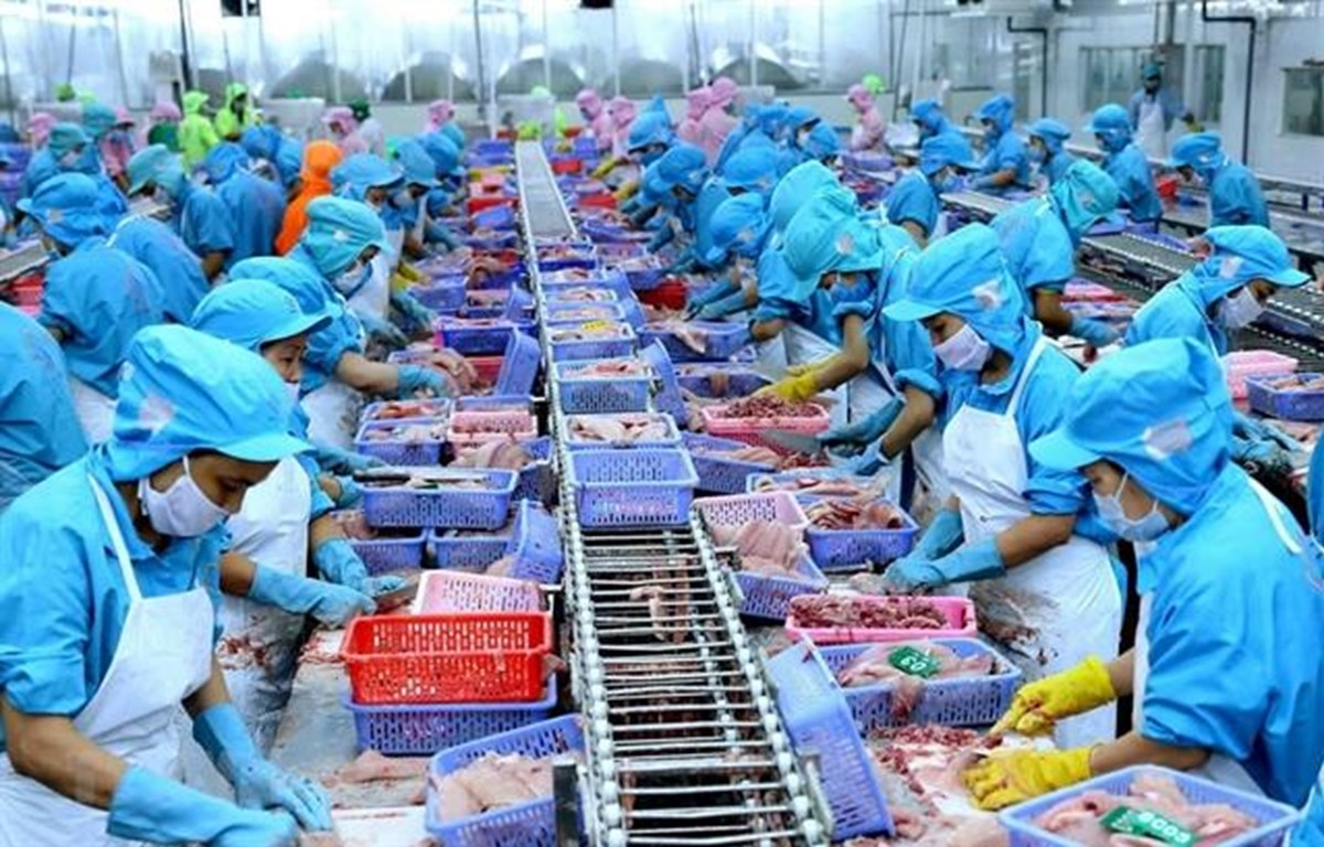Vietnam's seafood exports rise but challenges continue
