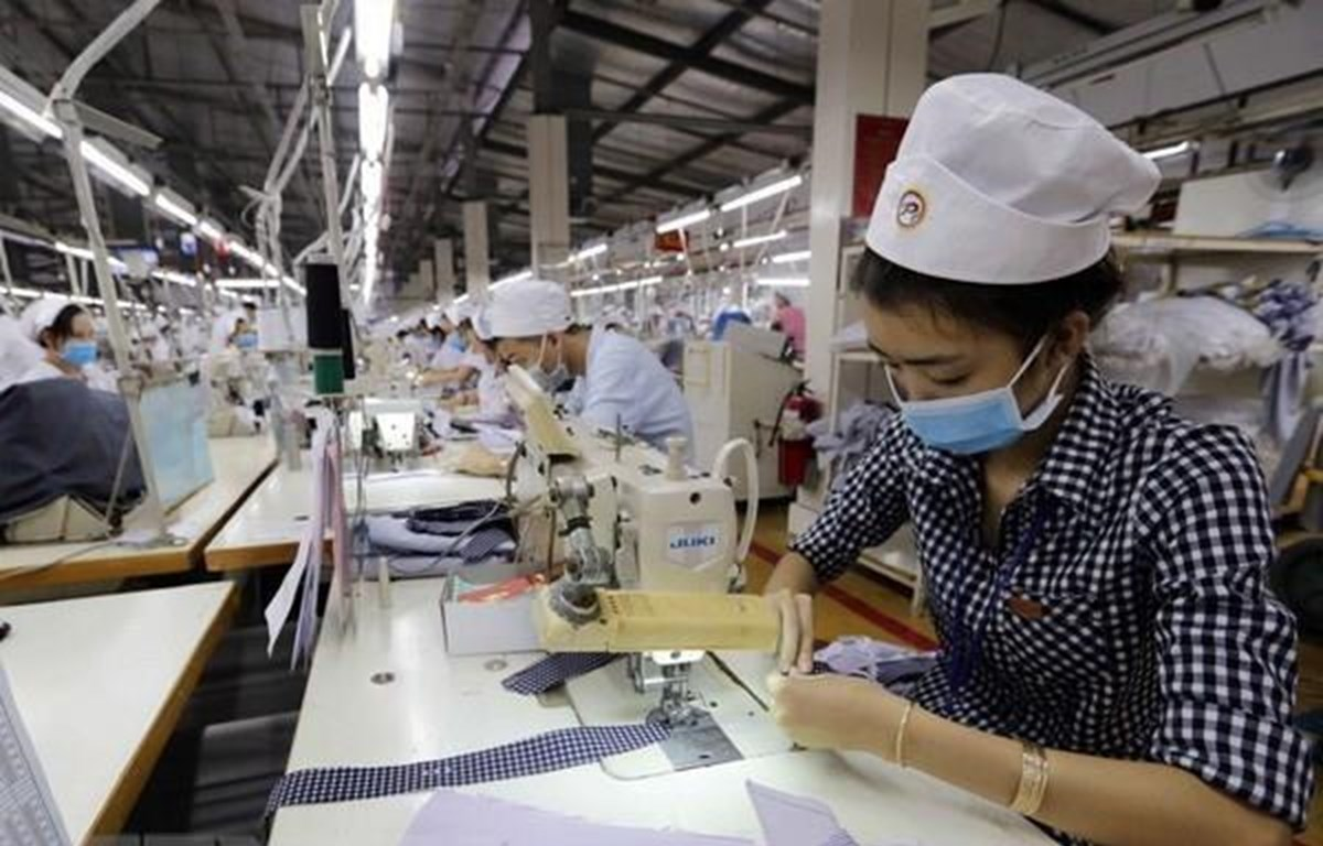 Nearly 100,000 enterprises established in eight months