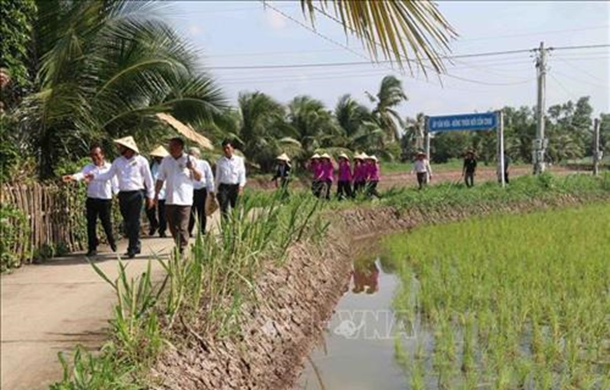 Tra Vinh launches community-based tourism site