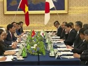 Vietnam, Japan foster bilateral ties in numerous aspects