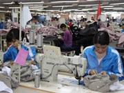 Dong Nai: 5,800 rural workers benefit from vocational training project