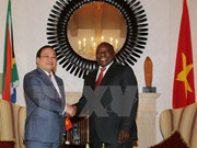 Vietnam, South Africa step up cooperation