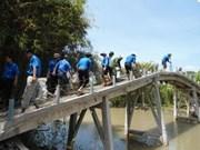 Bridge built to reach flood-isolated Dong Nai