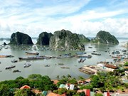 PR training workshop for Ha Long Bay preservation project