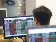 Vietnam's stocks slide, giving back gains