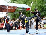 International championship promotes traditional martial arts