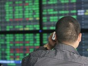 Vietnam shares lose for fifth day