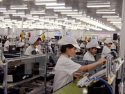 Vietnam pushes ahead with business climate improvement