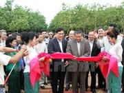 Vietnam rubber latex processing plant built in Cambodia