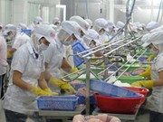 Challenges facing seafood exporters in Chinese market spotlighted