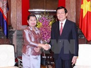 President: Vietnam value ties with neighbours
