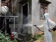Dong Nai acts to contain dengue