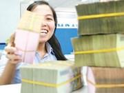Vietnam has adequate budget oversight