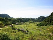 Cao Son's striking terrain steals travellers' hearts
