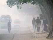 Malaysia willing to help Indonesia address haze